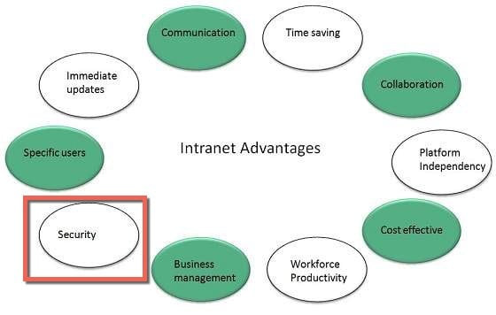 Advantages in Creating an Intranet